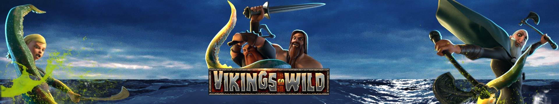Slider Banner - Vikings Go Wild